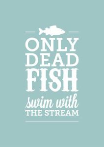 Fish2_9068ebf3-0662-4987-8e68-2ba31407289f_grande